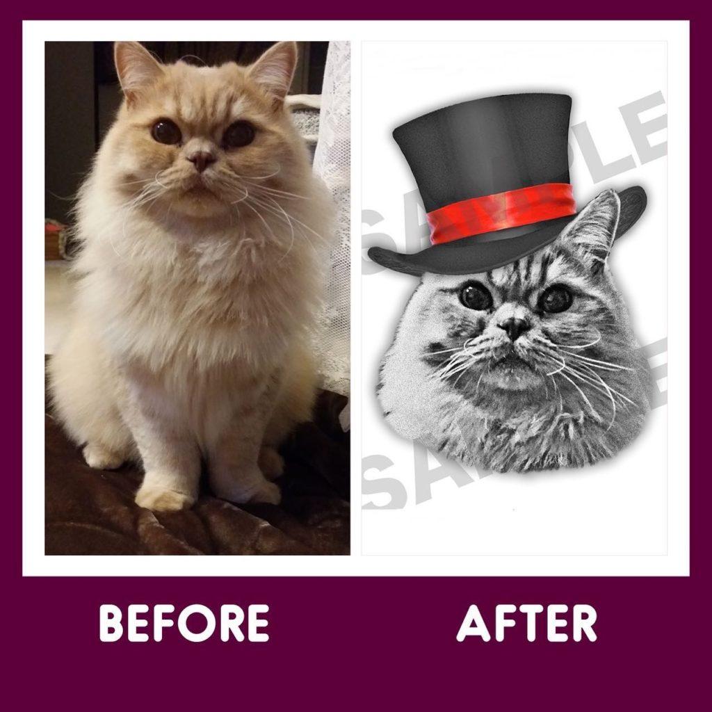 猫おしゃれ似顔絵ビフォーアフター
