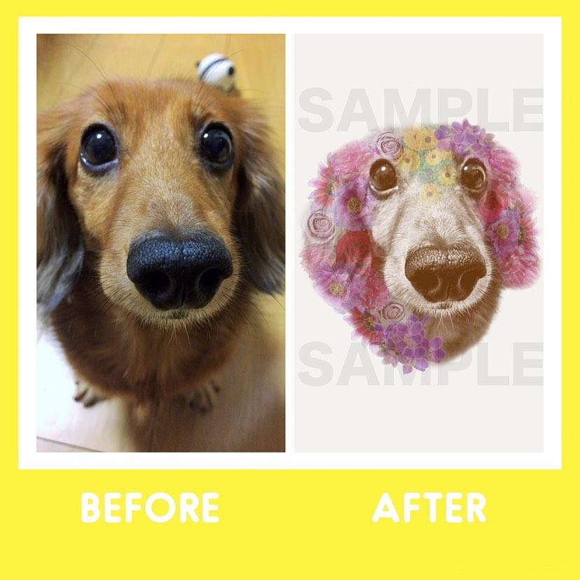 ビフォーアフター犬似顔絵